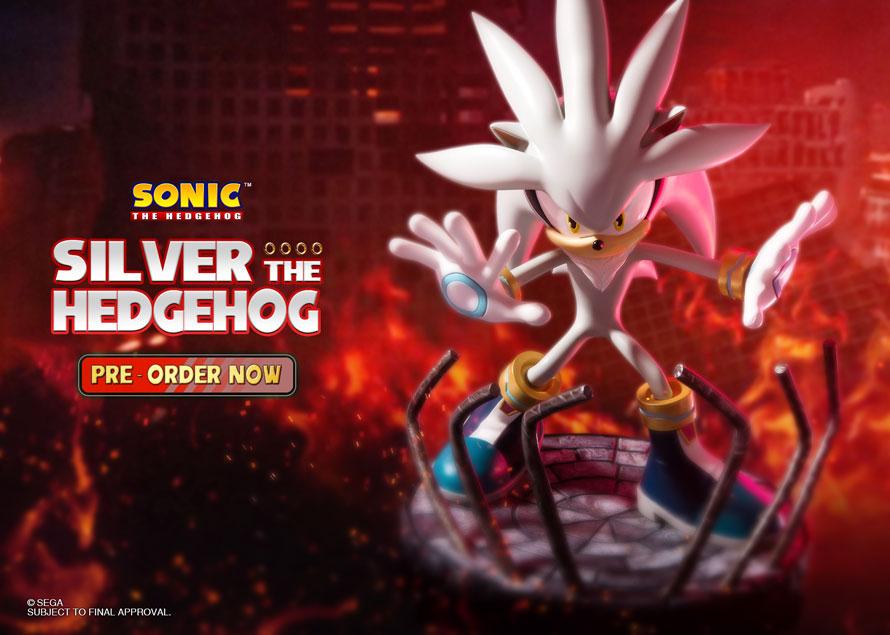 Silver the Hedgehog Regular