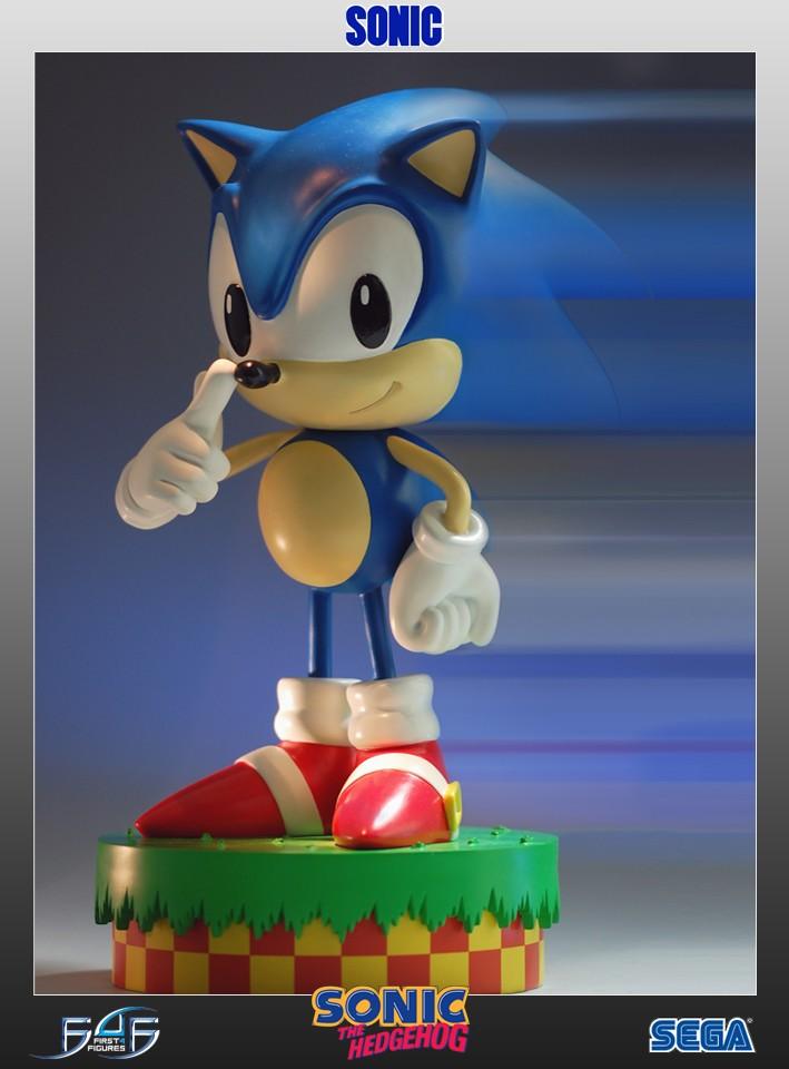 "Sonic the Hedgehog 12"""