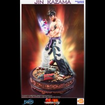 Jin Kazama - TEKKEN 5 (Exclusive)