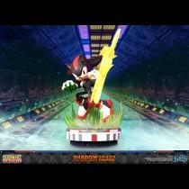 Sonic the Hedgehog™ – Shadow the Hedgehog: Chaos Control (Standard Edition)