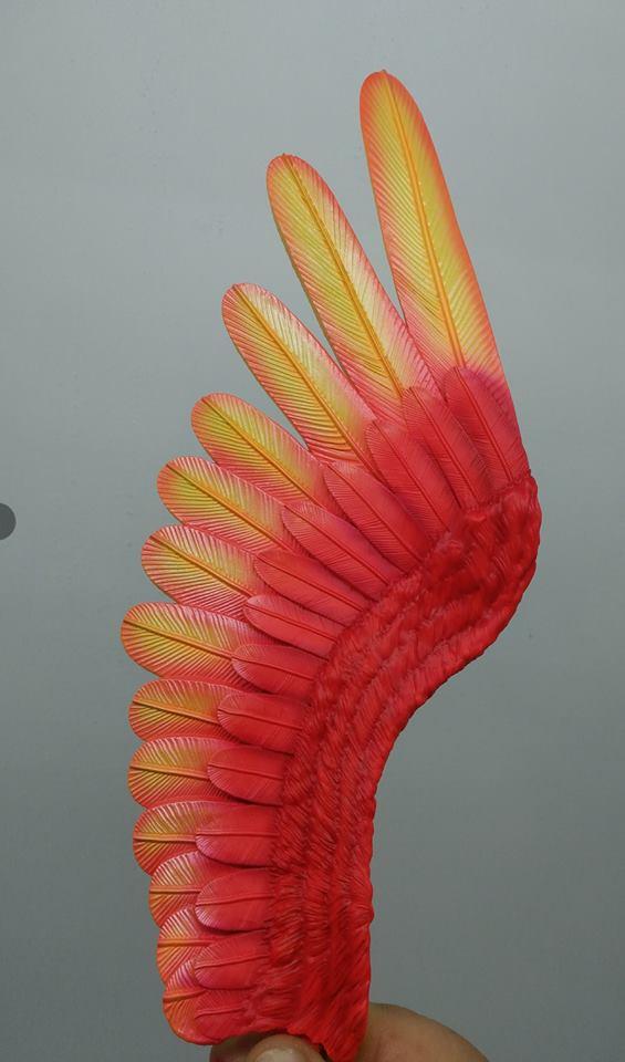 Kazooie's wing